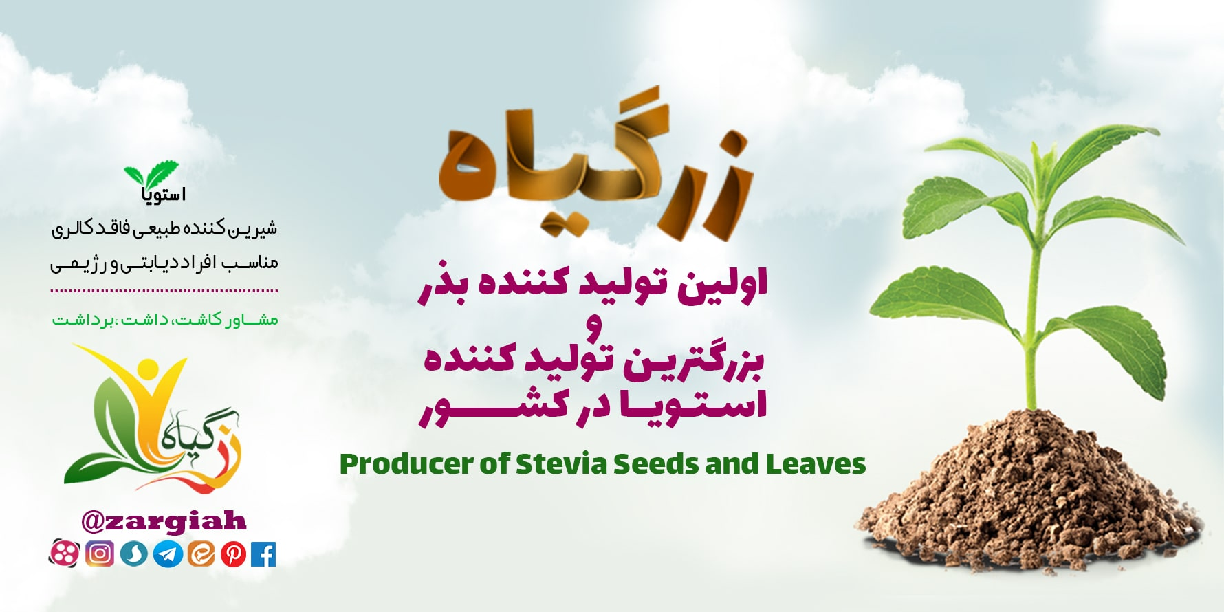 تولبد کننده بذر