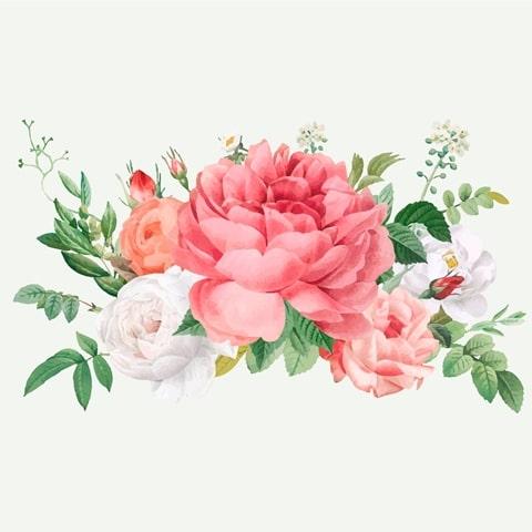 گل های زینتی
