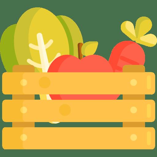 میوه گیاهان دارویی